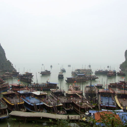 Halong Bay Avatar